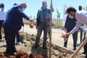 Başkan Mahçiçek'ten 19 Mayıs'ta Anlamlı Etkinlik